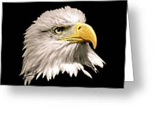 Eagle Profile Front Greeting Card