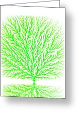 Electron Tree Greeting Card