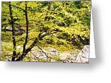 Fall Along Williams River Greeting Card