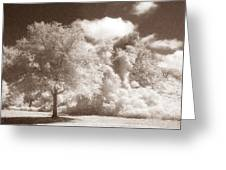Park Place Greeting Card