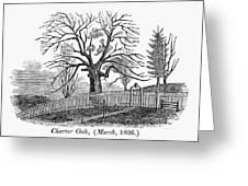 Hartford: Charter Oak Greeting Card