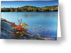 Killarney Provincial Park In Fall Greeting Card