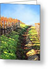 Late Autumn In Napa Valley Greeting Card