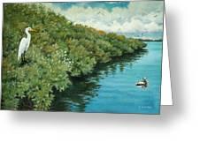 Mangroves 2 Greeting Card