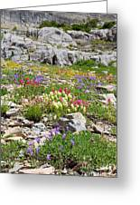 Mother Nature's Master Garden Greeting Card