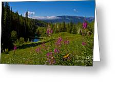 Ohio Creek Valley Colorado Greeting Card