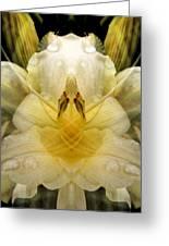 Pale Yellow Fantasy Greeting Card
