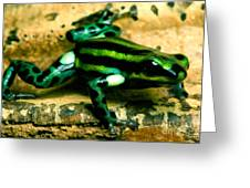 Pasco Poison Frog Greeting Card