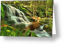 Pool In The Forest Greeting Card