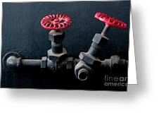 2 Red Valves Greeting Card