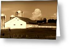Cattle Farm Mornings Greeting Card