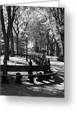Scenes From Central Park Greeting Card