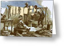 Slaves In Union Camp Greeting Card by Photo Researchers
