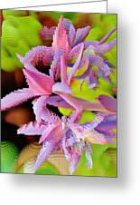 Succulent Blossom Greeting Card