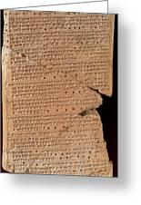Venus Tablet Of Ammisaduqa, 7th Century Greeting Card