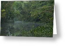 View Of The Menangul River And Rain Greeting Card