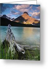 Waterfowl Lake Greeting Card