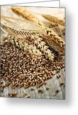 Wheat Ears And Grain Greeting Card