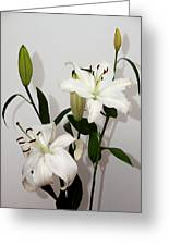 White Lily Spray Greeting Card