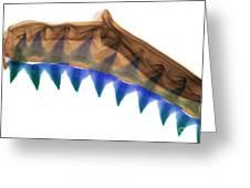 X-ray Of Shark Jaws Greeting Card