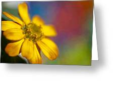 Yellow  Greeting Card by Al Hurley