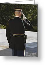 Honor Guard At The Tomb Greeting Card