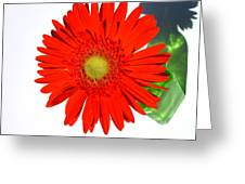 2003a1 Greeting Card