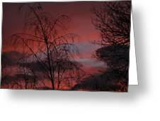 2011 Sunset 1 Greeting Card
