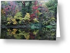 Sugar Ridge State Fish And Wildlife Area Greeting Card by Jack R Brock