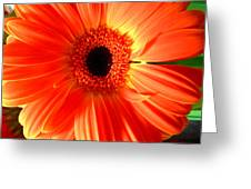 2120a Greeting Card