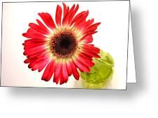 2192c-014 Greeting Card