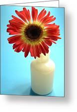 2231c1-001 Greeting Card