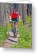 Mountain Bike Greeting Card