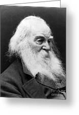 Walt Whitman (1819-1892) Greeting Card