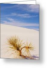 White Sands Greeting Card