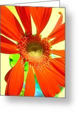2505c1-019 Greeting Card