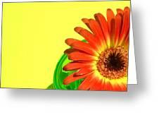 2510c-003 Greeting Card