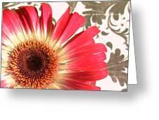 2556c1-011 Greeting Card