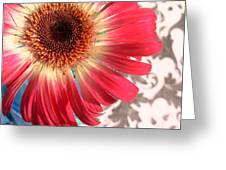 2558c1-001 Greeting Card