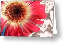 2558c1-010 Greeting Card