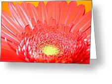 2560-001 Greeting Card