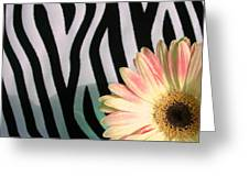 2560c2-005 Greeting Card