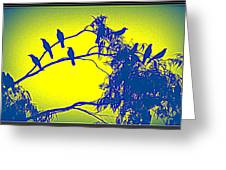 Crows Crows And Crows Greeting Card