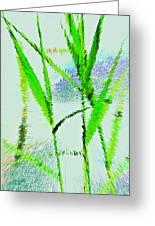 Water Reed Digital Art Greeting Card