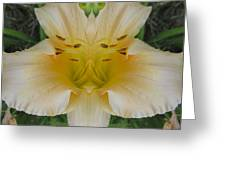 Angelic Lily Greeting Card