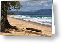 Deserted Beach In Phuket In Thailand Greeting Card