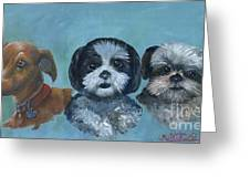 3 Dog Night Greeting Card