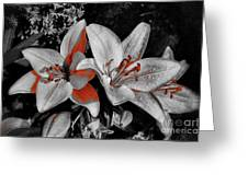3 Flowers Greeting Card