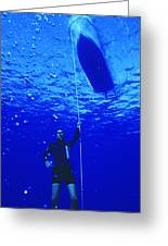 Free-diver Greeting Card