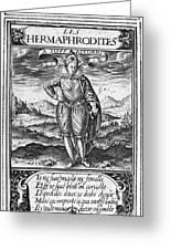 Henry IIi (1551-1589) Greeting Card
